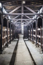 repurposed-cattle-shed_17214425352_o-768x1159