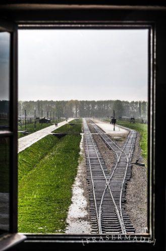 along-the-tracks_17215560861_o-768x1159
