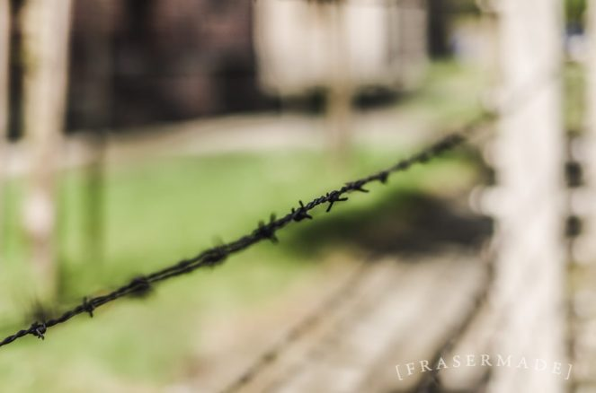 barbed-and-charged_17216038125_o-1024x678